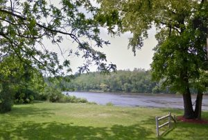 chemung river view, grass and trees